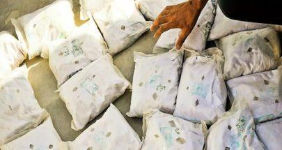 ضبط شحنة مخدرات ضخمة في النيجر قادمة من لبنان